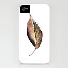 autumn leaf iPhone (4, 4s) Slim Case