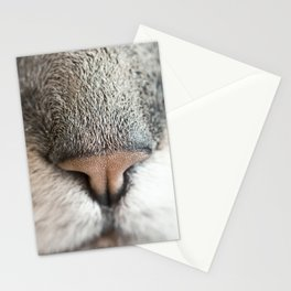 Sniff Stationery Cards