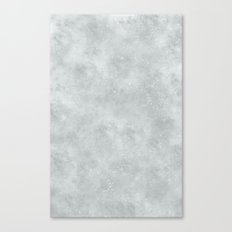 Moon Surface Canvas Print