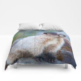 The Marmot Comforters