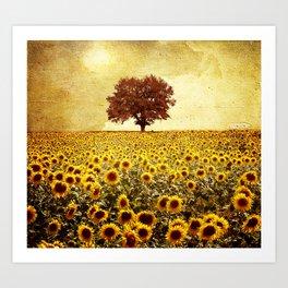 lone tree & sunflowers field Art Print