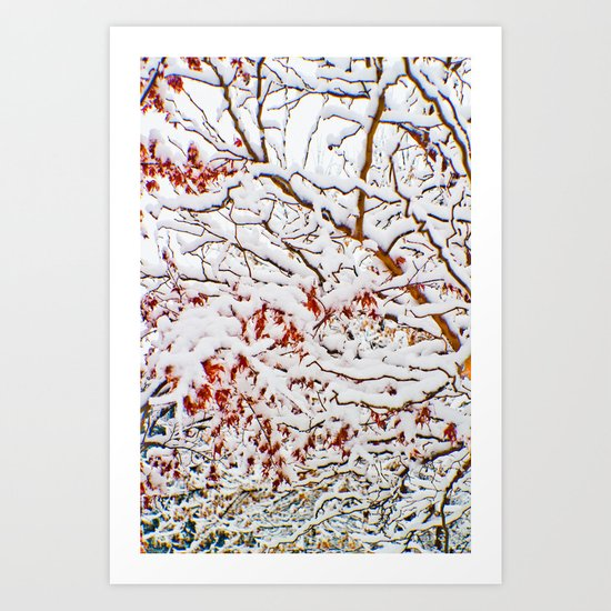January snow Art Print