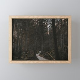 Into the Dark Forest - Landscape and Nature Photography Framed Mini Art Print