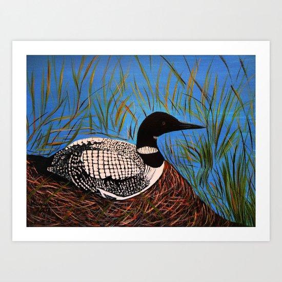 Loon on the Nest  Art Print