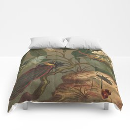 Antique Cicada Lithograph Comforters