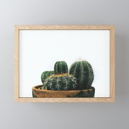 02_Cactus Framed Mini Art Print