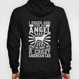 Dog Shirt Asked God for Angel He sent Me A Crazy American Lab Hoody