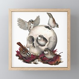 White-throated Sparrows Forage Amongst Human Remains Framed Mini Art Print