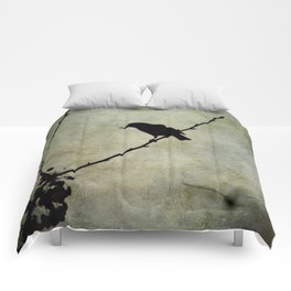 Oh Black Bird Comforters