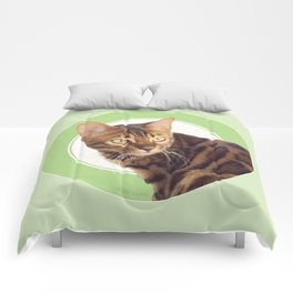 Boris the cat - Boris le chat Comforters