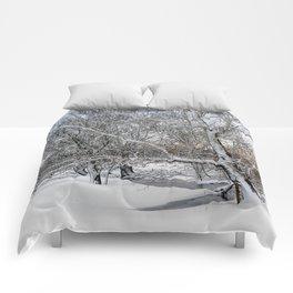 winter coating Comforters