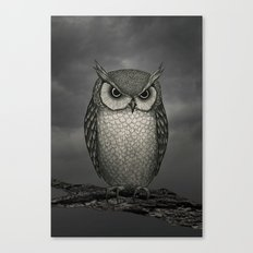 An Owl Canvas Print