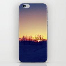 Winter Sets iPhone & iPod Skin