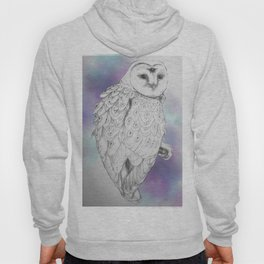 Owl with a third eye and crystal ball Hoody