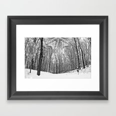 Witchy Forest Framed Art Print