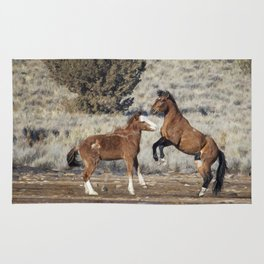 Bachelor Stallions Practicing the Art of Fighting, No. 1 Rug