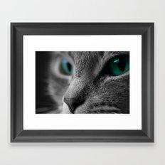 Cats Eyes Framed Art Print