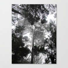 Ghosts in the Trees Canvas Print
