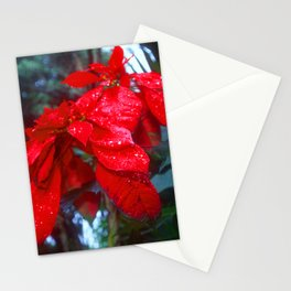 Red Wild Flower Leaves In Papua New Guinea Jungle Stationery Cards