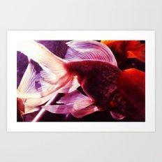 金鱼一 Art Print
