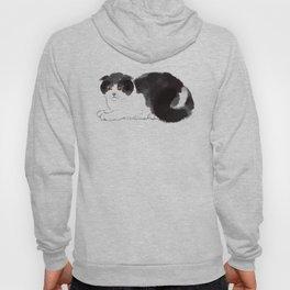 Scottish Fold Cat Hoody