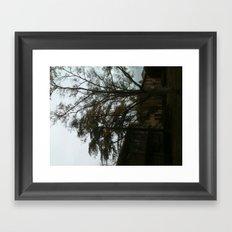 The tree tells a story Framed Art Print