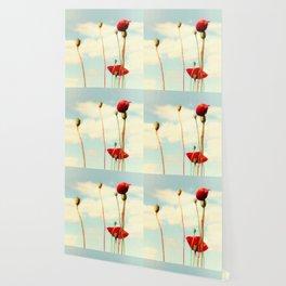 Lost Poppies Wallpaper