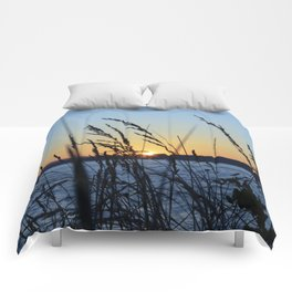 Sunset Sea Grass Comforters