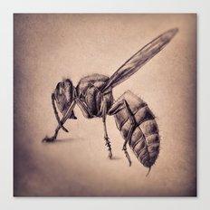 Bee Canvas Print