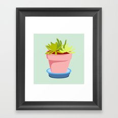 Succulent #2 Framed Art Print