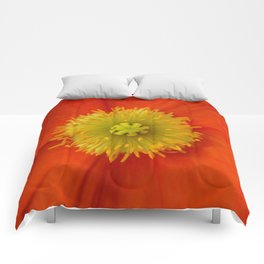 Poppy Love... Comforters