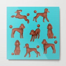 Chocolate Poodles Pattern  (Turquoise Background) Metal Print