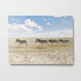 Zebra on African Savannah Metal Print