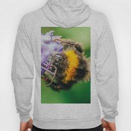 Happy Bumblebee, Bumble-Bee Flying, Gathering Flower Pollen, Bee, Insect Macro Photography Hoody