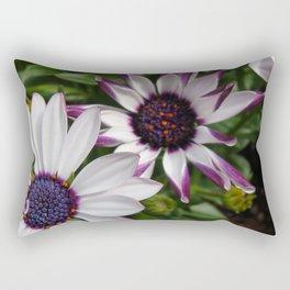 Purple and White Osteospermum Rectangular Pillow