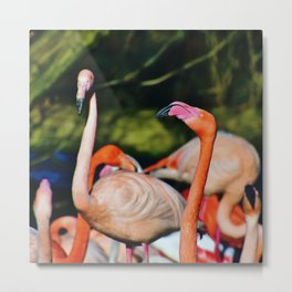 Flamingo-ing Metal Print