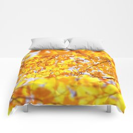 Autumn beech Fagus foliage yellow Comforters