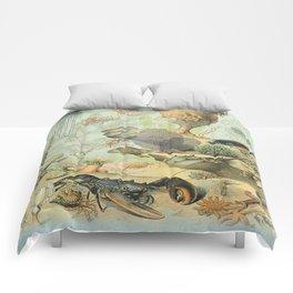 SEA CREATURES COLLAGE, OCEAN ILLUSTRATION Comforters