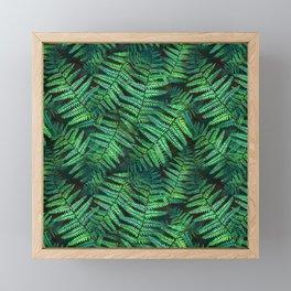 Among the Fern in the Forest Framed Mini Art Print