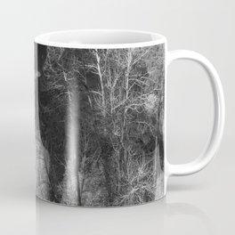Tree Reflection and Falls Coffee Mug