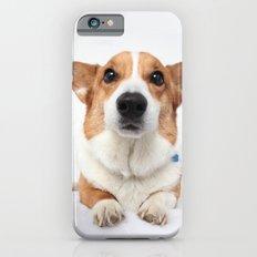 Dog -  iPhone 6s Slim Case