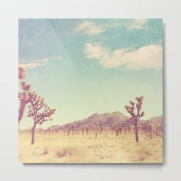 Joshua Tree desert photograph. No. 189 Metal Print
