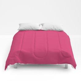 Raspberry Sorbet Color Accent Comforters