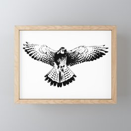 Kestrel flapping its wings Framed Mini Art Print