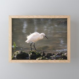white heron bird by the river Framed Mini Art Print