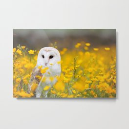 Little Owlet in Flowers (Color) Metal Print