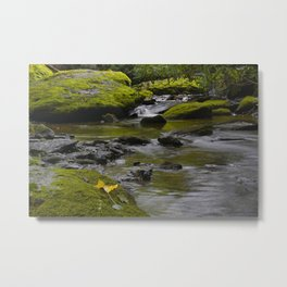 Motion blurred water flowing over moss-covered rocks Metal Print