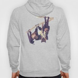 Flying Foxes Hoody