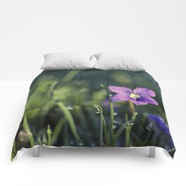 purple in the morning Comforters
