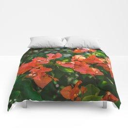 Tropical Hawaii IV Comforters